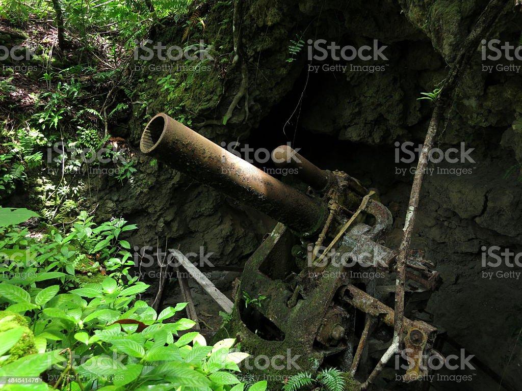 Cave Based Japanese WWII Artillery in Peleliu, Palau stock photo