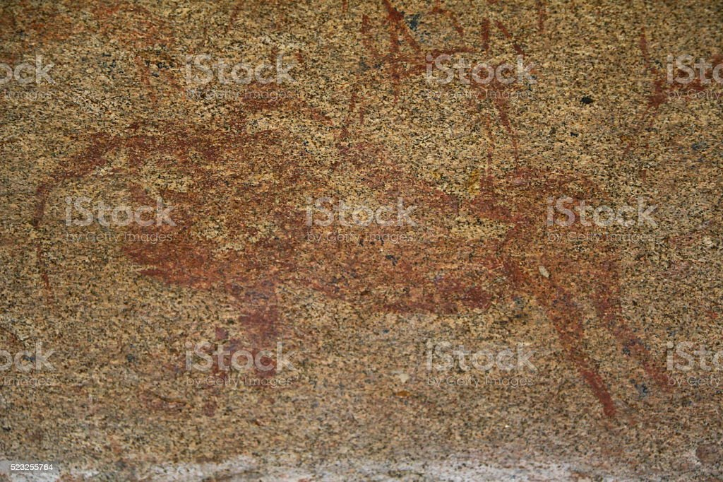 Cave painting Taurus in Phillips Cave, Erongo Mountains Namibia Africa stock photo