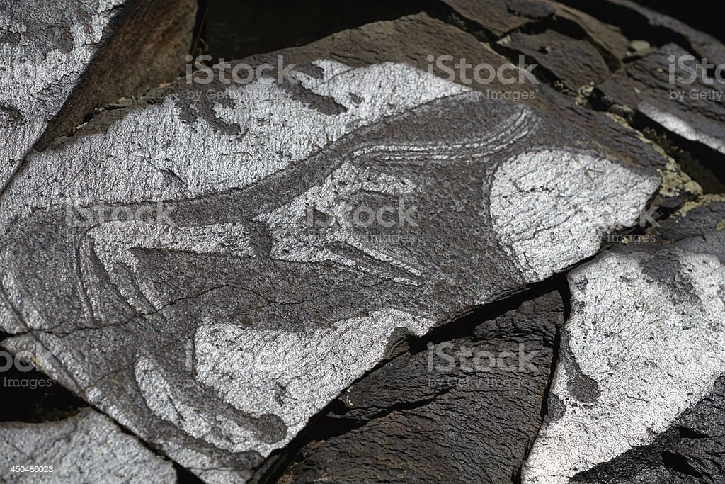 Cave paintings royalty-free stock photo