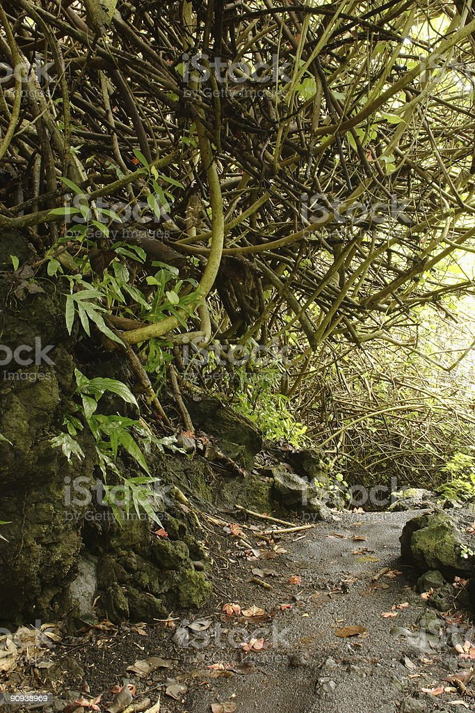 Cave Trail stock photo