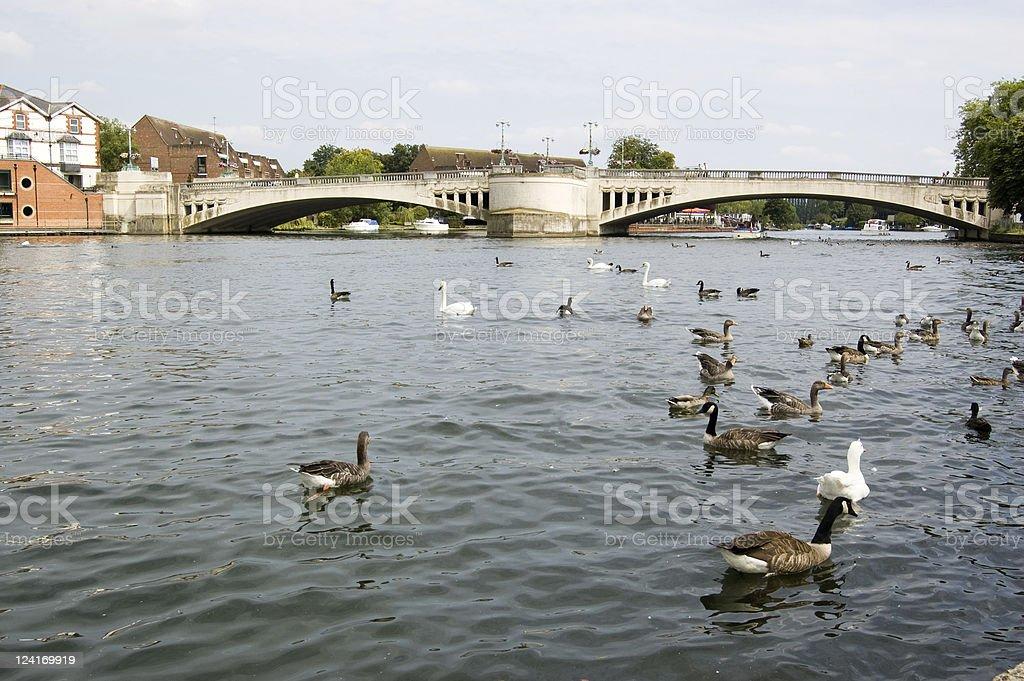 Caversham Bridge, Reading, Berkshire stock photo