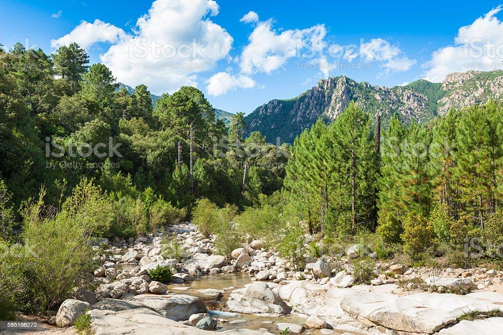Cavu natural pool near Tagliu Rossu Sainte Lucie in Corsica stock photo
