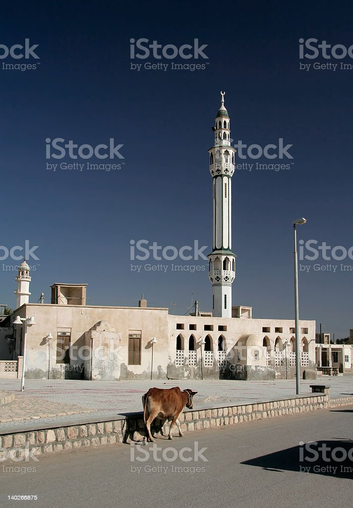 caw and minaret royalty-free stock photo