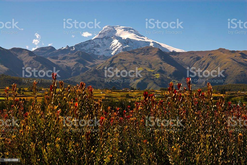 Cayambe at Andes stock photo