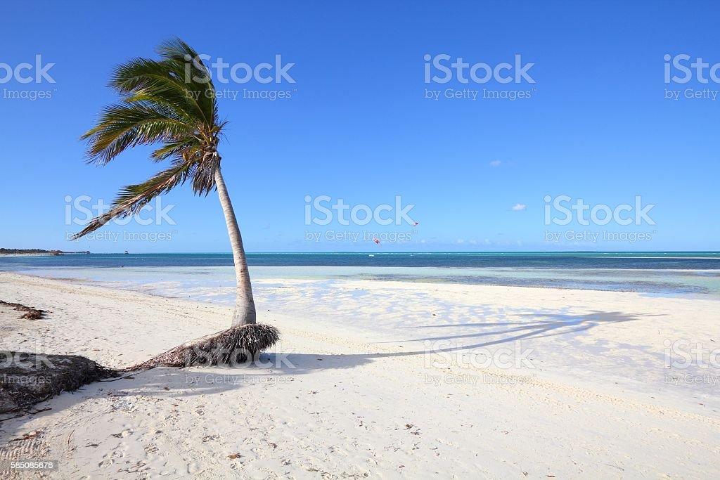 Cayo Guillermo beach, Cuba stock photo
