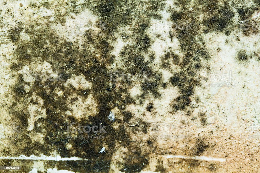 cease on wall royalty-free stock photo