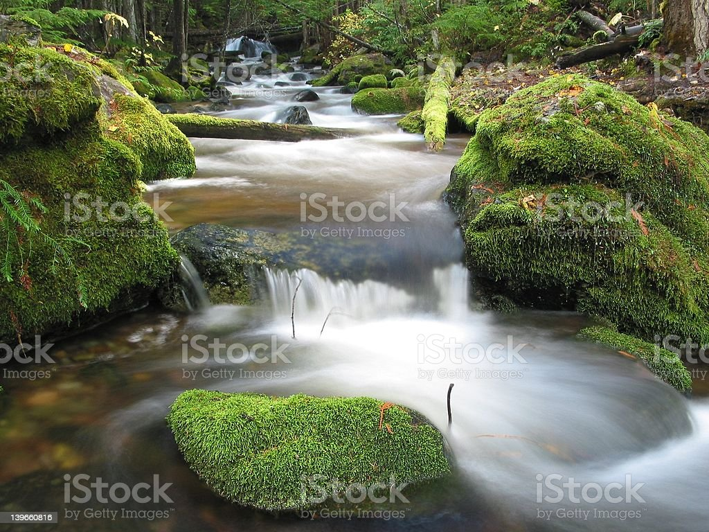 Cedar Creek In The Autumn #6 royalty-free stock photo