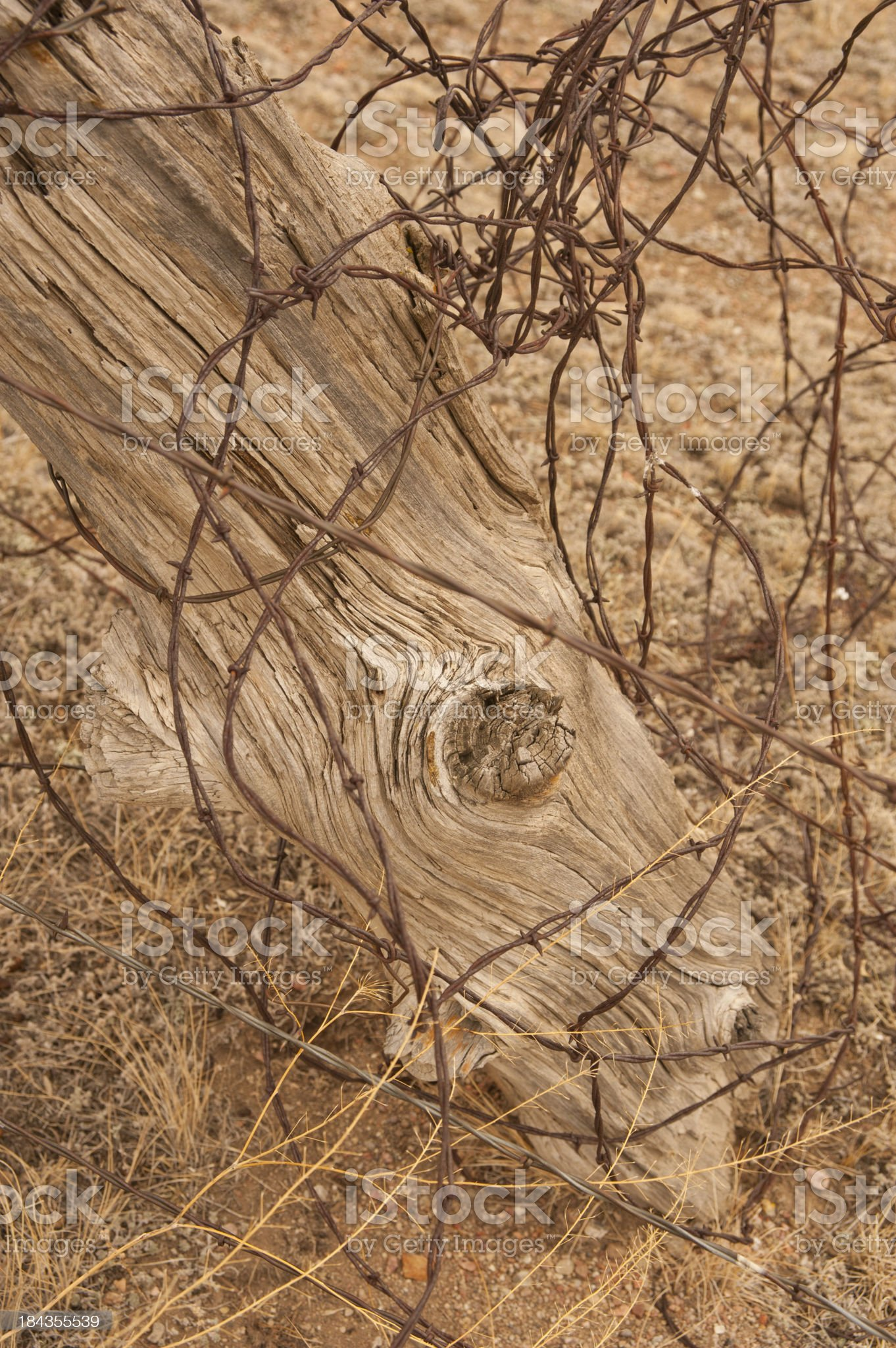 Cedar Fence Post and Barbed Wire royalty-free stock photo