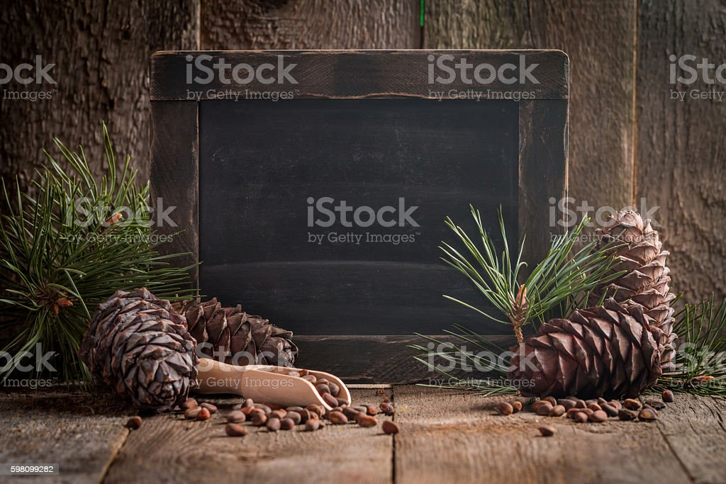 Cedar nuts and branch with cone stock photo