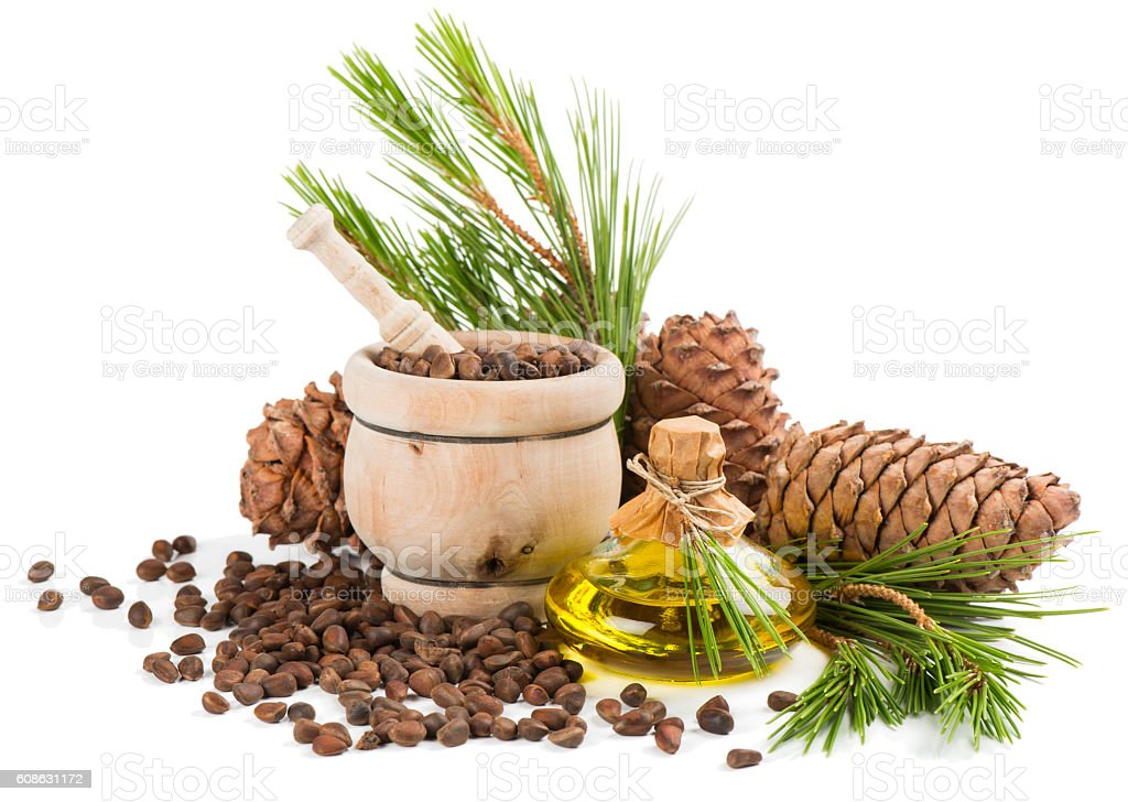 Cedar oil and pine nuts. stock photo
