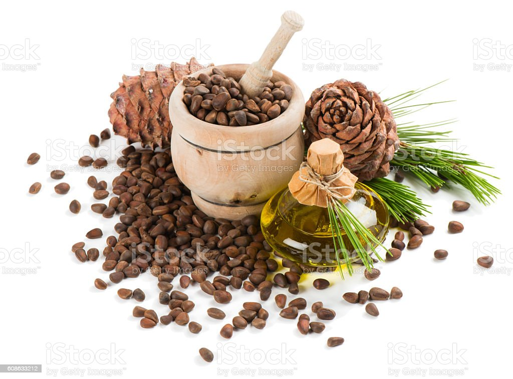 Cedar pine nuts and oil. stock photo