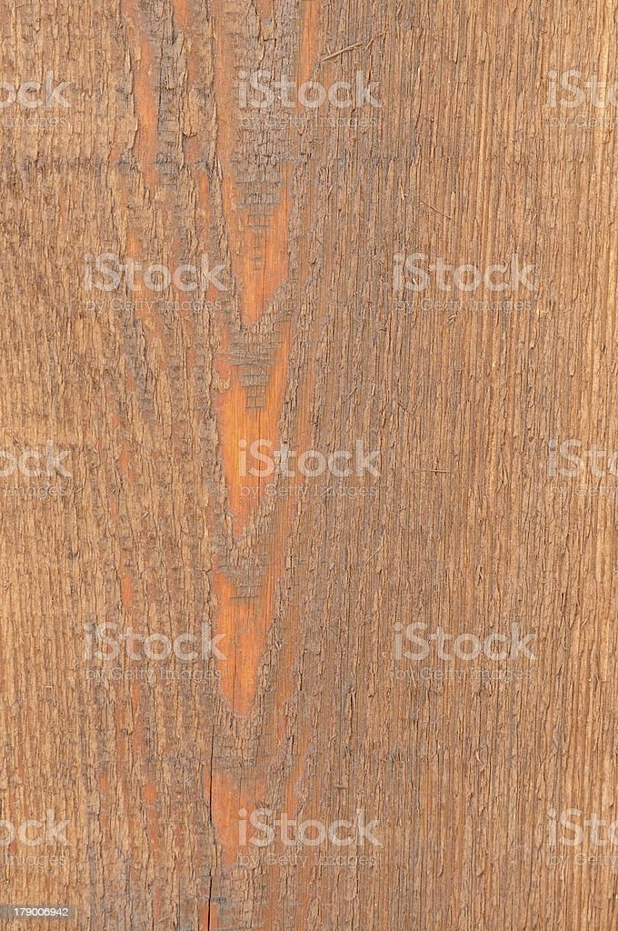 Cedar Wood texture close-up background royalty-free stock photo