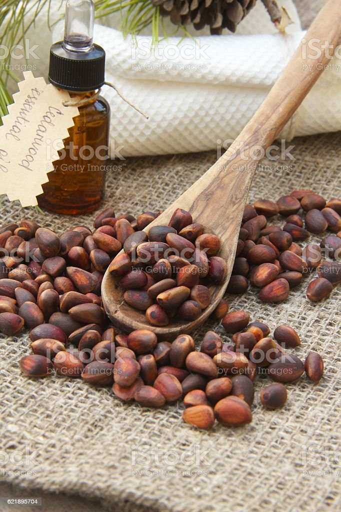 Cedarwood nuts in the olive wood spoon stock photo