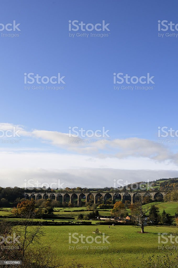 Cefn Viaduct portrait royalty-free stock photo