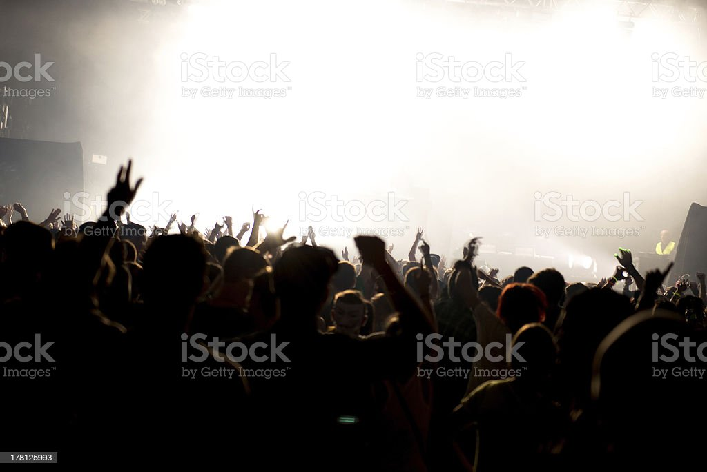 celebrating crowd of people at festival concert or party royalty-free stock photo