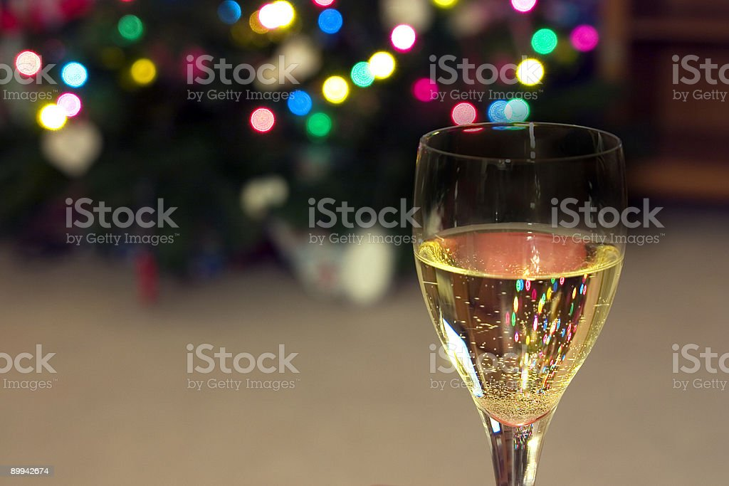 Celebrating the Holidays royalty-free stock photo