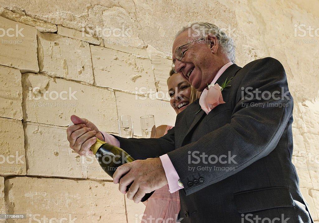 Celebrating the wedding royalty-free stock photo