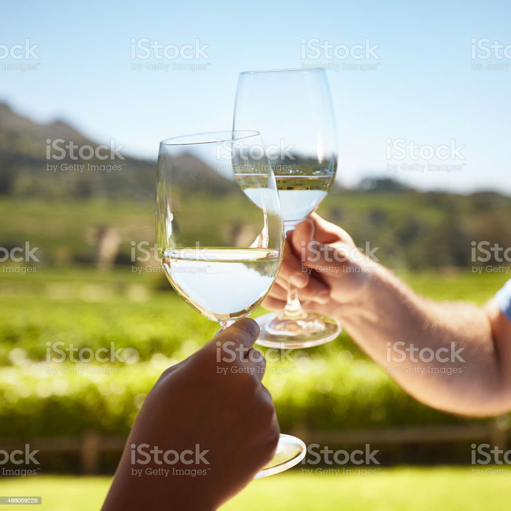 Celebrating with white wine stock photo