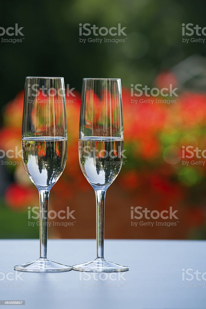 Celebration in the garden royalty-free stock photo