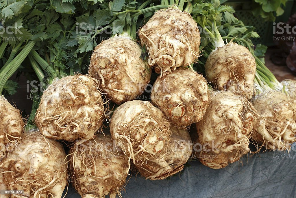 Celeriac (Apium graveolens) royalty-free stock photo