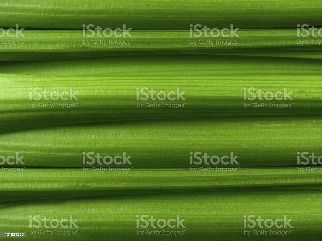 Celery Background royalty-free stock photo