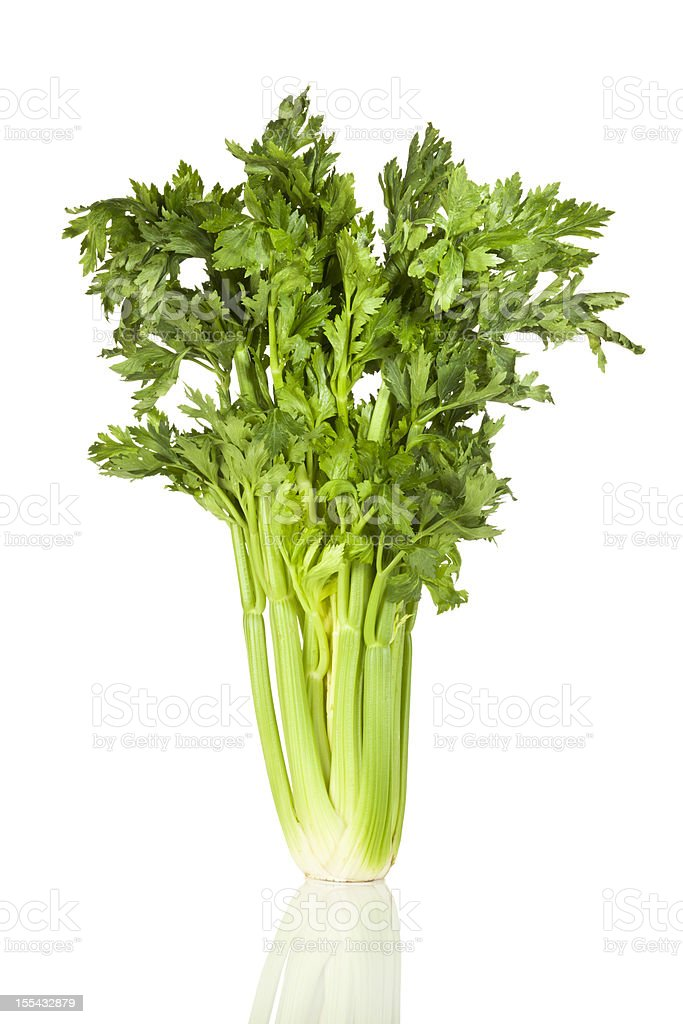 Celery bunch isolated on reflective white background stock photo