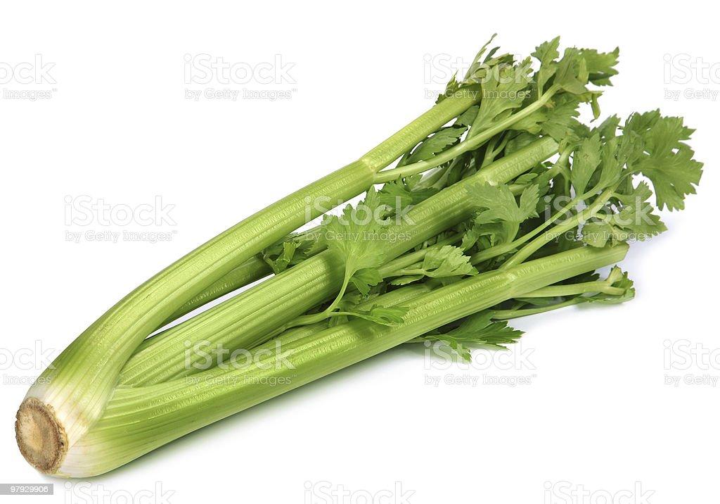 Celery root stock photo