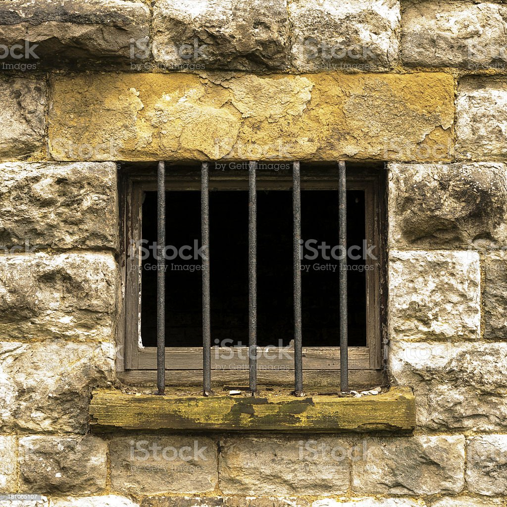 cell bars royalty-free stock photo