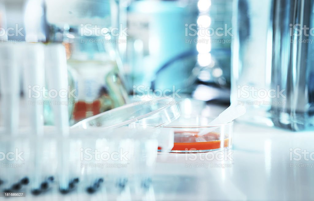 Cell culture sample royalty-free stock photo