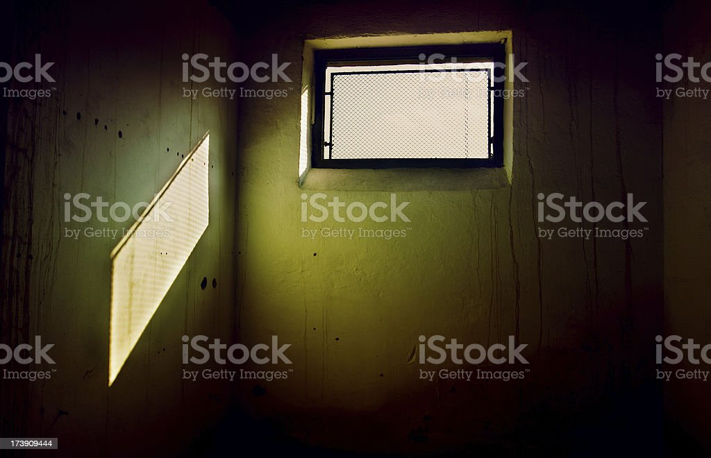 Cell stock photo