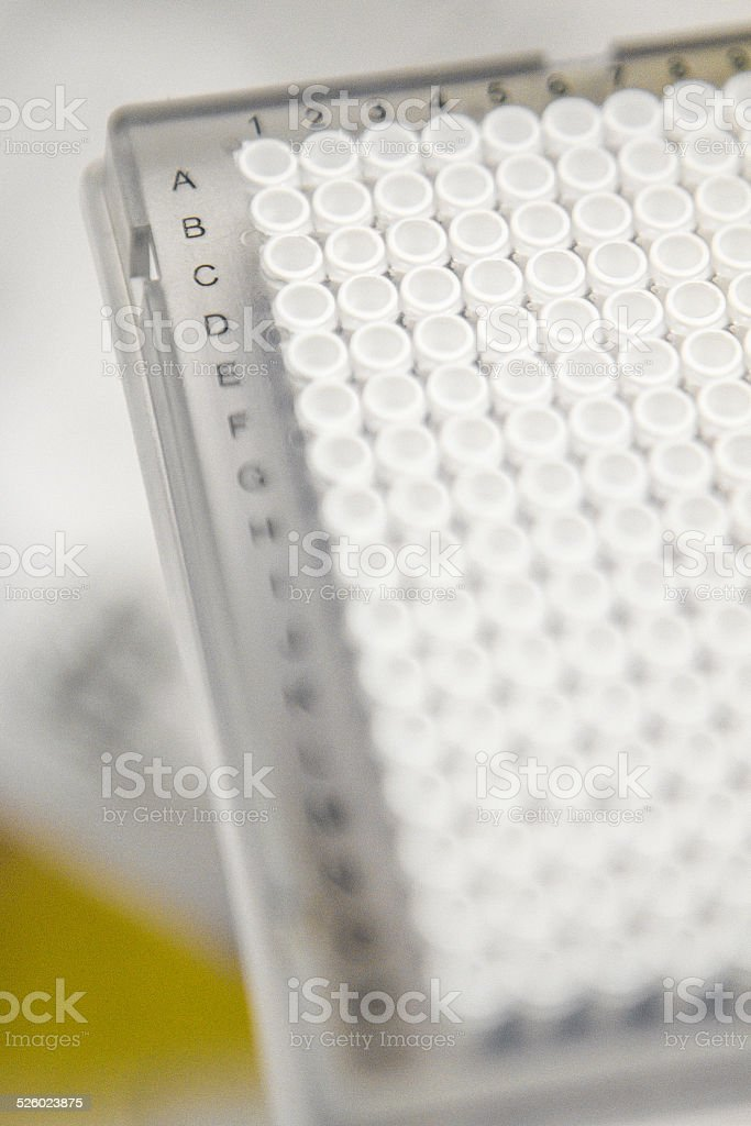 384 Cell Plate for Research stock photo