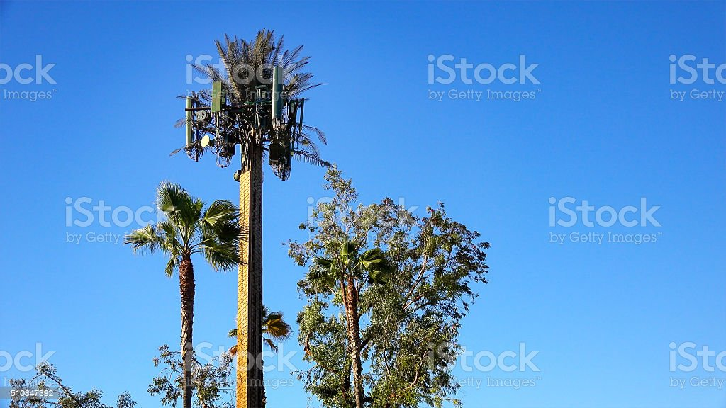 Cell Tower Camouflaged As Palm Tree stock photo
