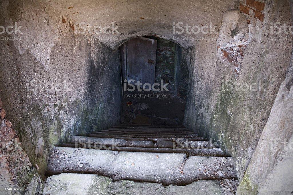 Cellar royalty-free stock photo