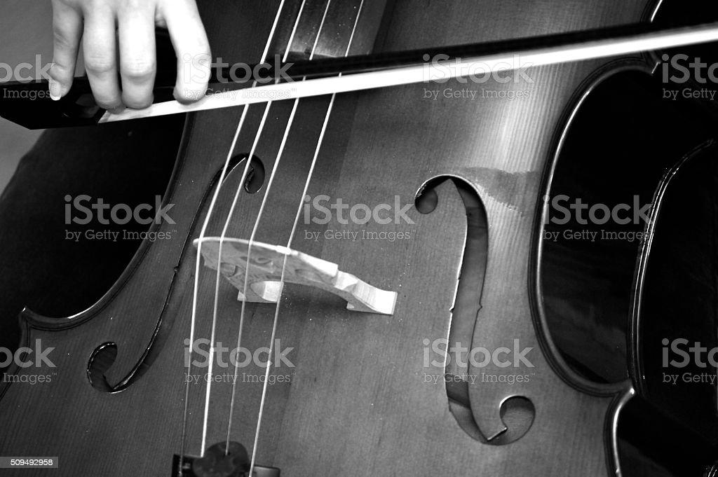 Cellist playing cello stock photo