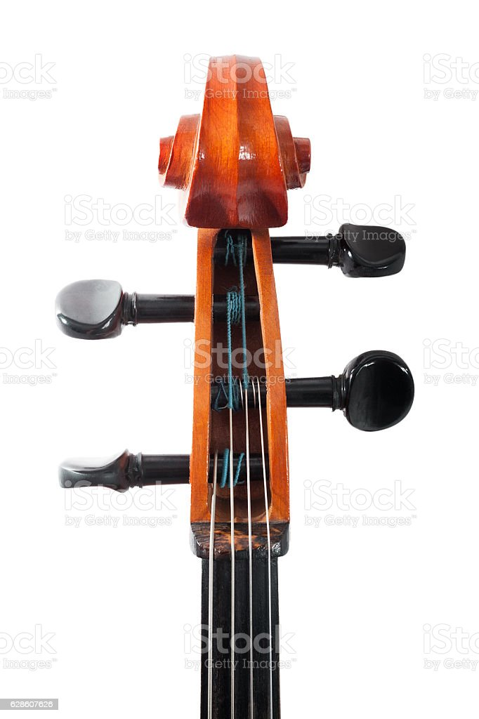 Cello. Classical music. Tuning stock photo