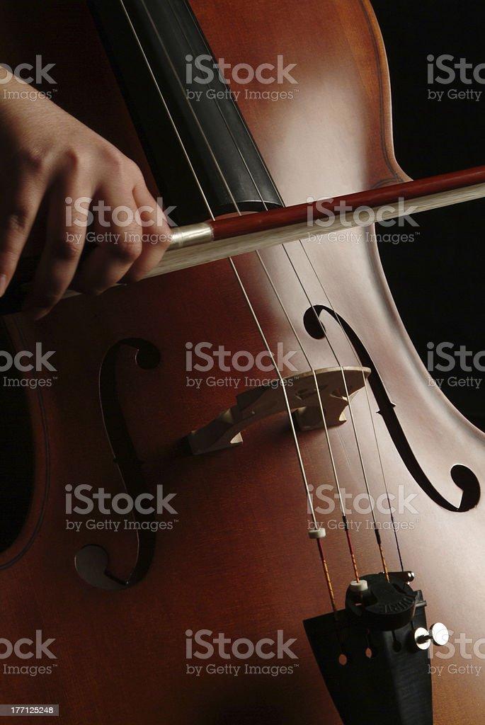cello player royalty-free stock photo