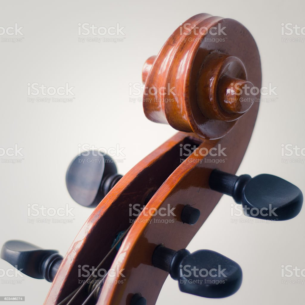 Cello Scroll And Tuning Pegs stock photo