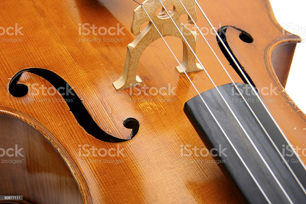 Cello-Bridge Detail royalty-free stock photo