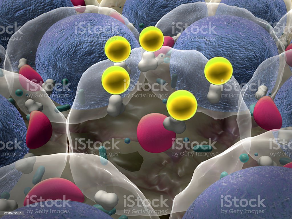 cells, cell structure stock photo