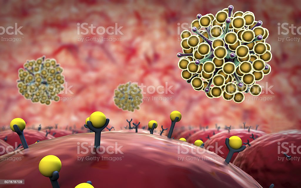 Cells, receptor stock photo