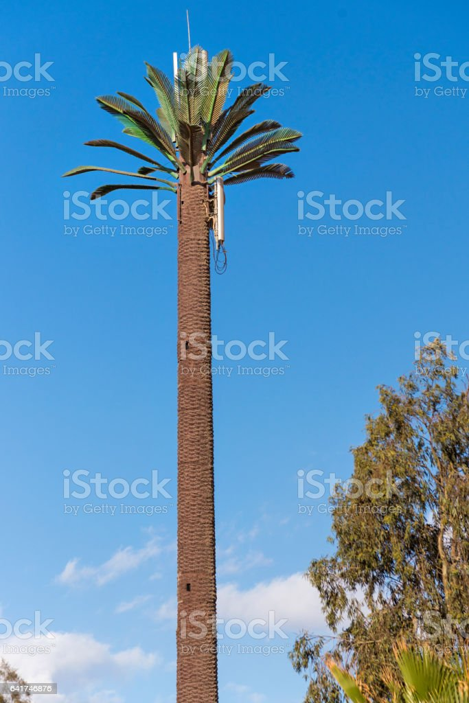 Cellular Tower As A Palm Tree stock photo