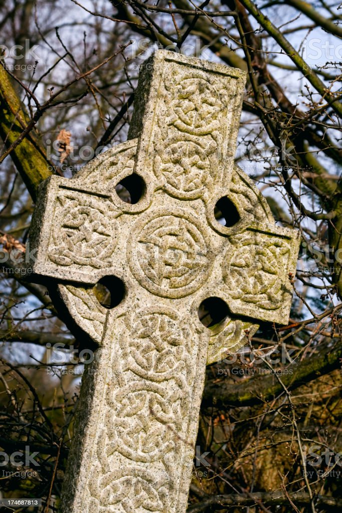 Celtic cross in undergrowth royalty-free stock photo