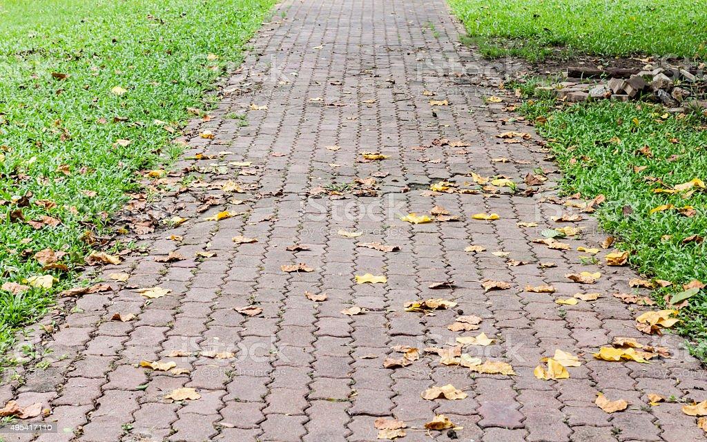 Cement Ziegel Spaziergang Lizenzfreies stock-foto