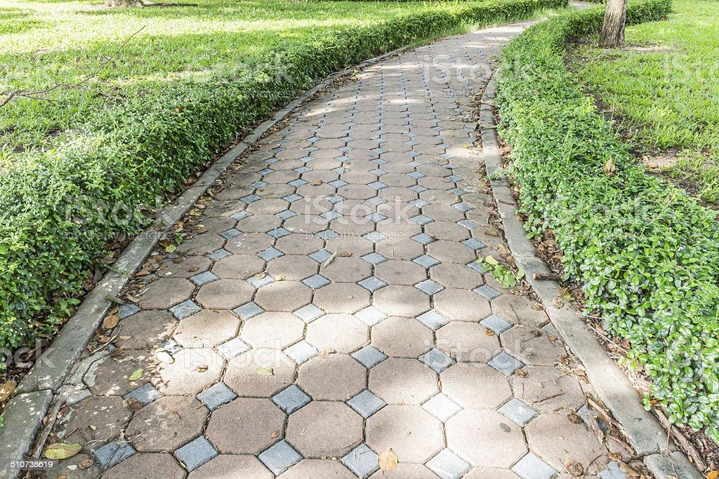 Zement Ziegelsteine Fußweg mit kleinen Baum auf beiden Seiten Lizenzfreies stock-foto