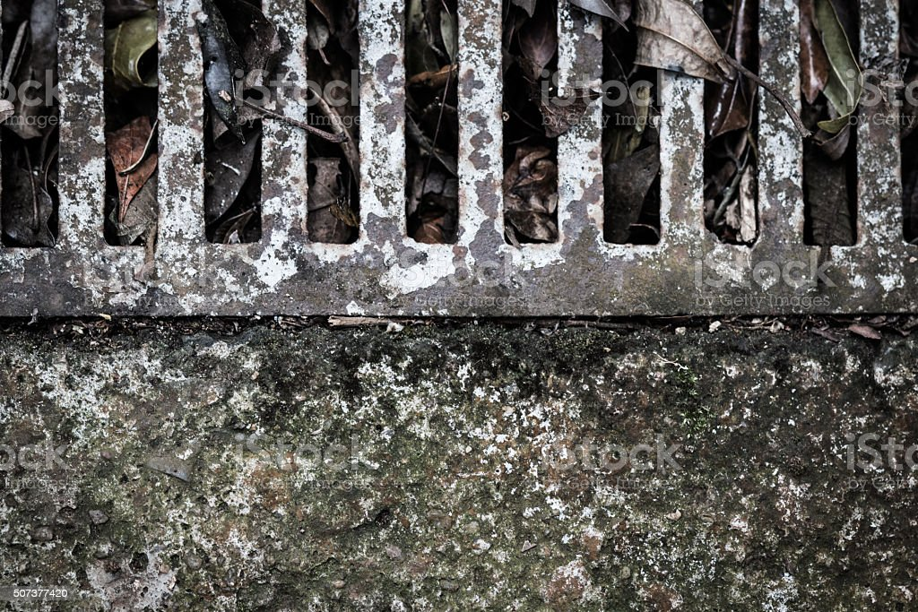 Cement floor with grid , leaves and moss from above stock photo