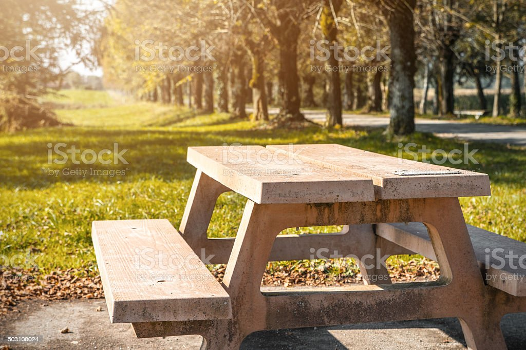 Cement picnic table in grass during autumn season in park stock photo