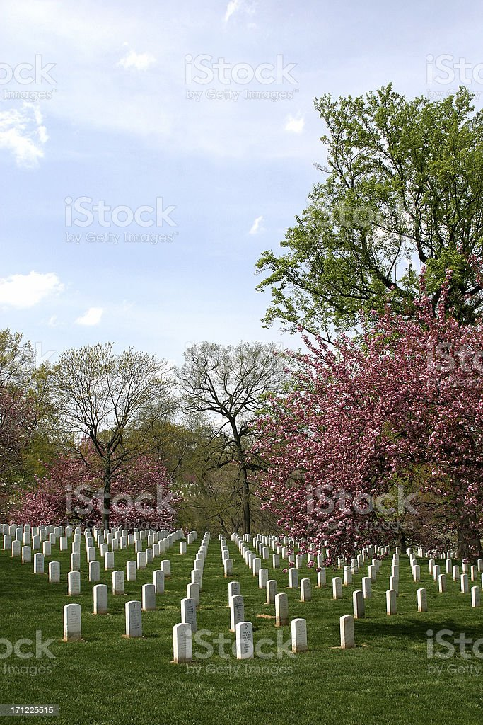 cemetary royalty-free stock photo