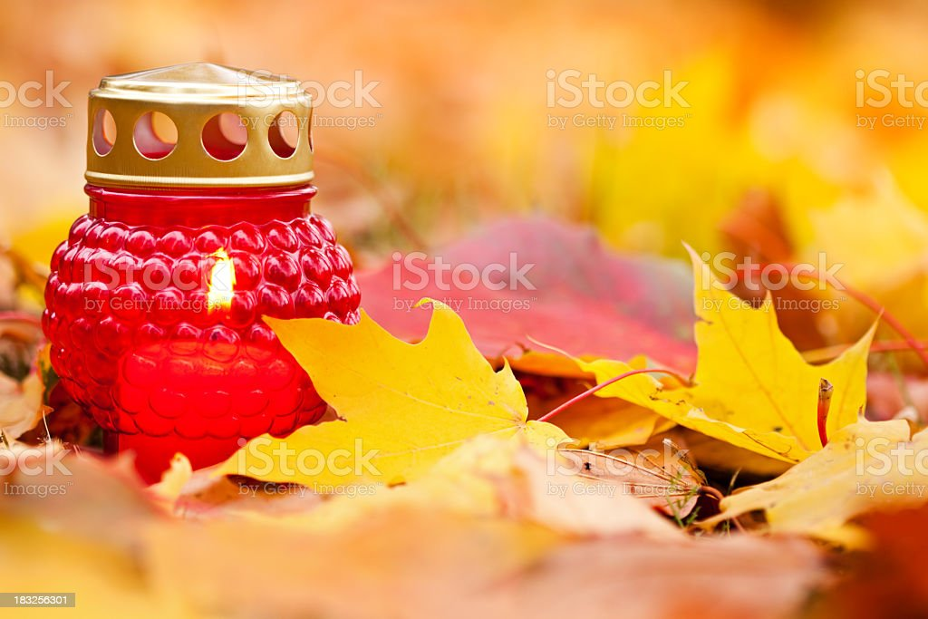 Cemetery candle in autumn royalty-free stock photo