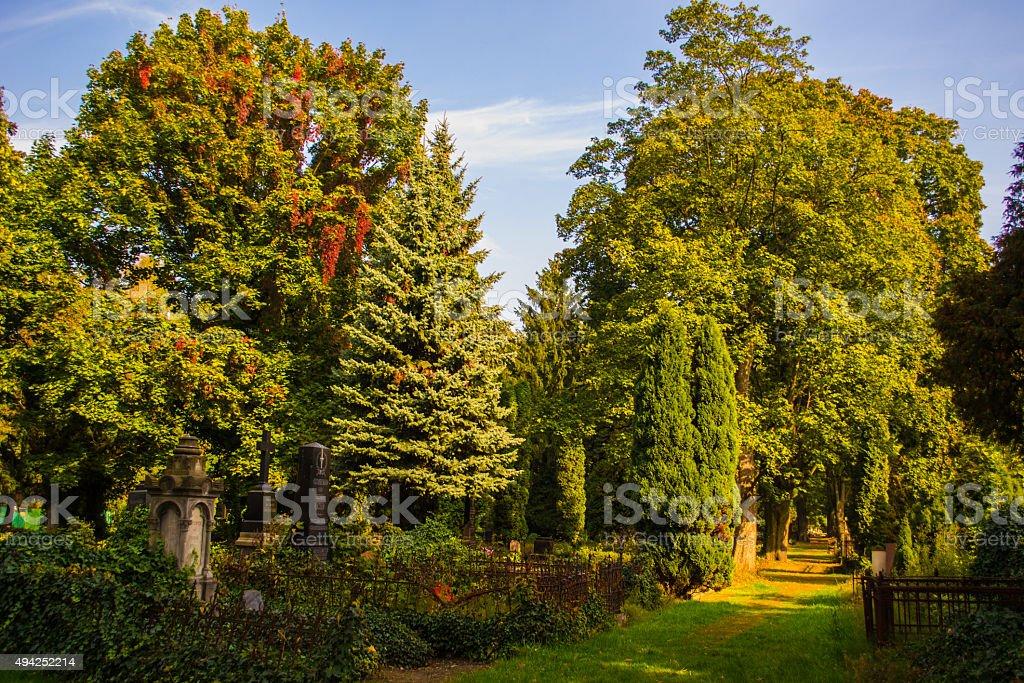 Cemetery - Helloween stock photo