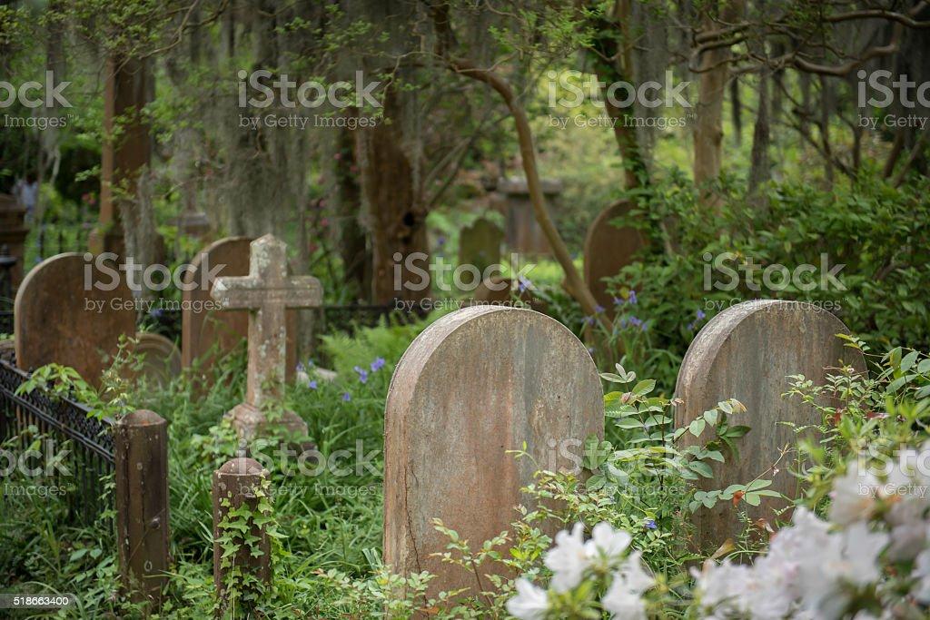 Cemetery in Charleston, SC stock photo